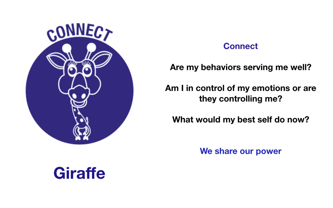 The Connect Giraffe